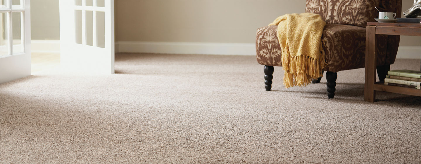 Carpet Cleaning Services Sydney FREE QUOTES