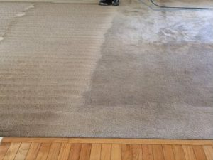 Water Damage Restoration, emergency carpet cleaners, Wet Carpet cleaning sydney, sydneyy emergency wet carpet carpet cleaning