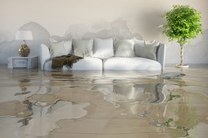 Carpet cleaners sydney - wet carpet Water Damage Restoration, carpet wet cleaners