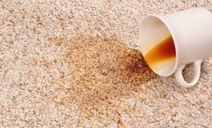 Pet stain removal, Coffee stain removal, Carpet cleaning service, spot cleaning, stain treament, wine stain removal, remove orange juice, Carpet Cleaning. Carpet cleaner